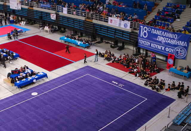 18o Πανελλήνιο Πρωτάθλημα Γουσού